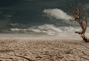 Drought-Public-Domain-300x204